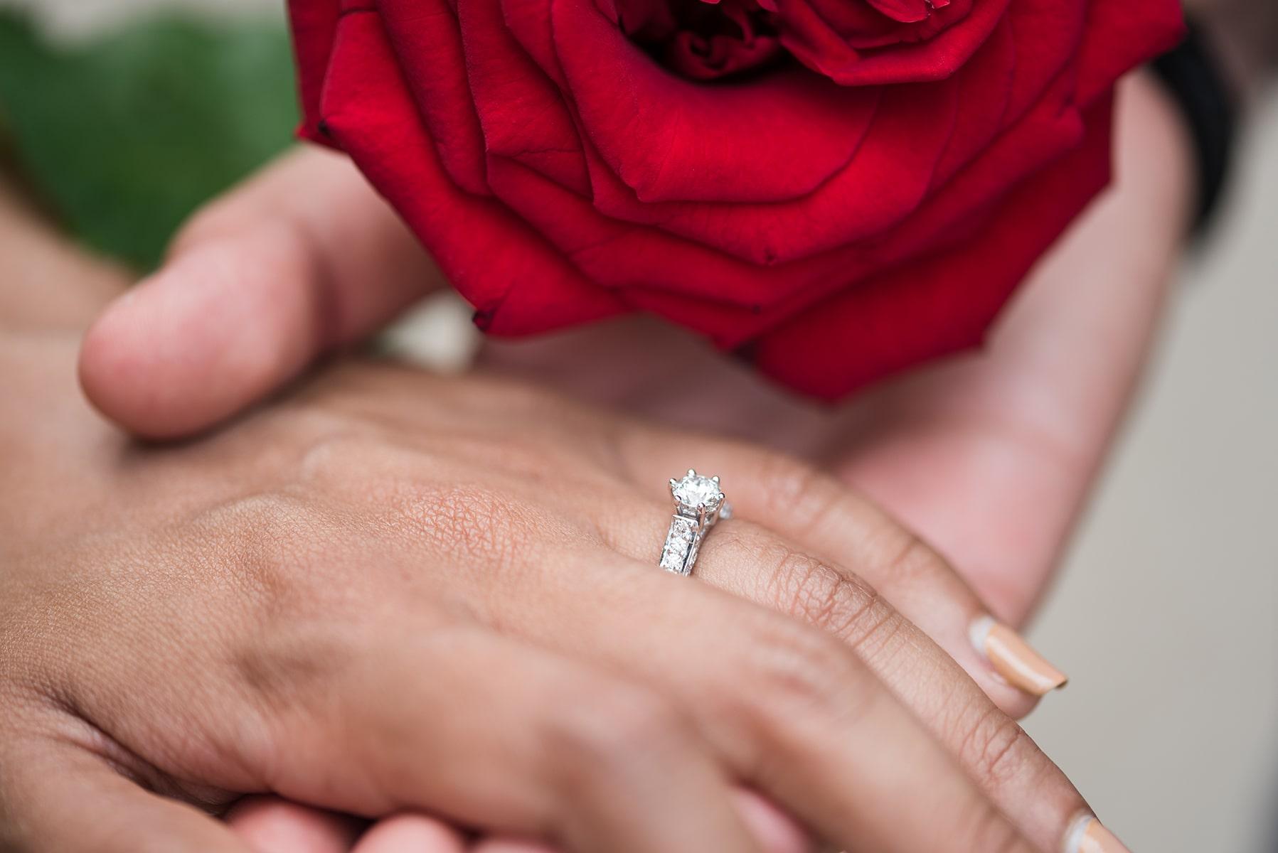 Heiratsantrag mit Fotoshooting in Schönbrunn